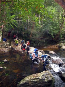 One of the more adventurous treks in Taman Negara; the river crossing near Kuala Juram on the way to Gunung Tahan.