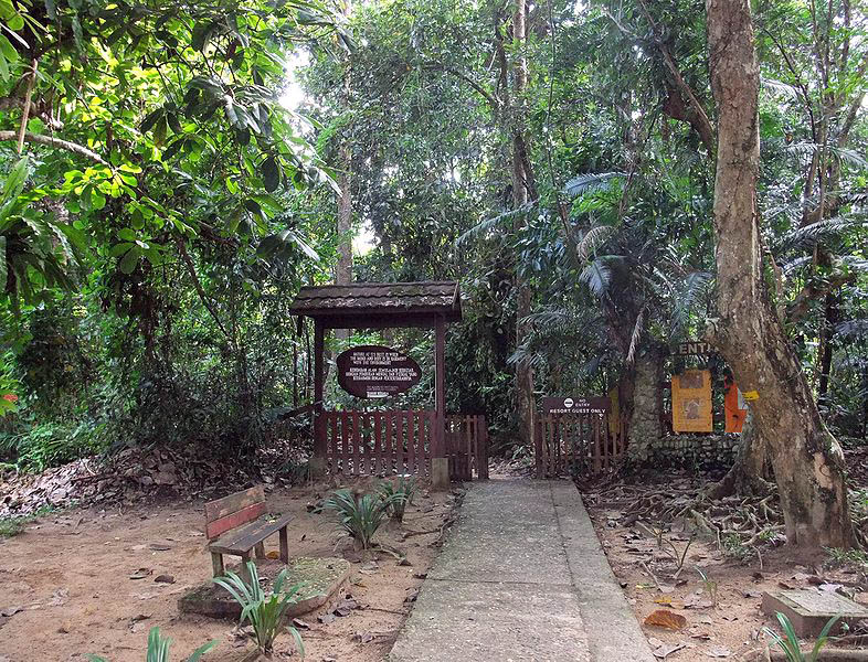 Entrance of the Taman Negara National Park, Malaysia.