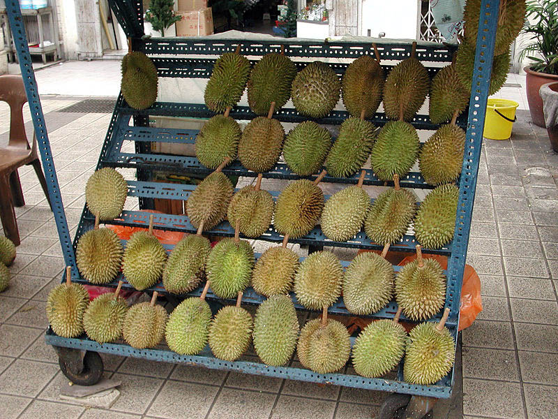 A display rack of durians for sale by a street vendor in Kuala Lumpur.