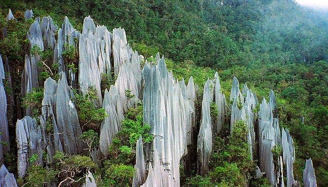 Gunung Mulu, Borneo, Malaysia