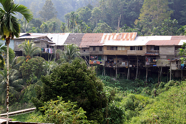 The 100 metre long stretch of the Rumah Bundong longhouse.
