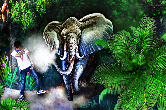 Walk with elephants and other majestic creatures in the animal kingdom